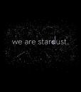 stardust-large-art